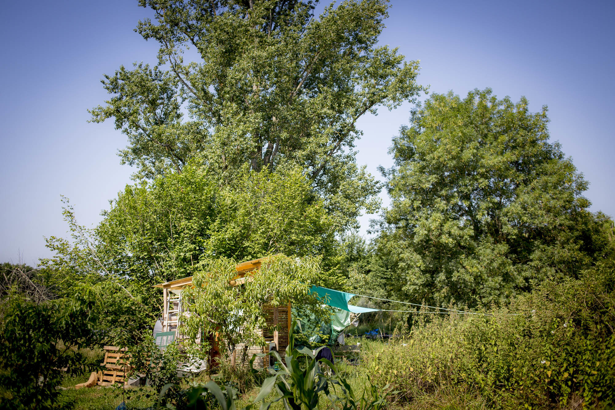 Camping collaboratif, tentes avec matelas dans une ferme en permaculture.