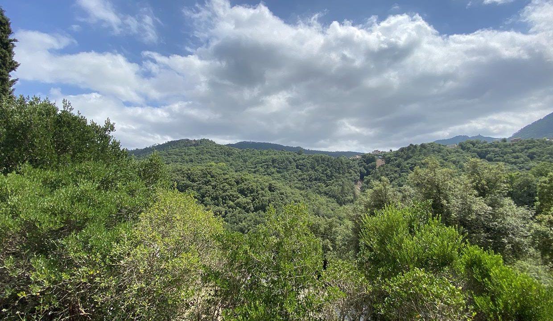 vue-caravane-les-adrets-esterel-airbnjune